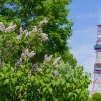 嵐の札幌ドームでライブ前に出没する公園はどこだ?ファンの予想は?